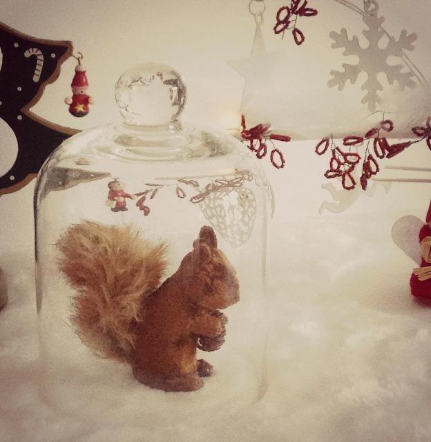 écureuil décoration