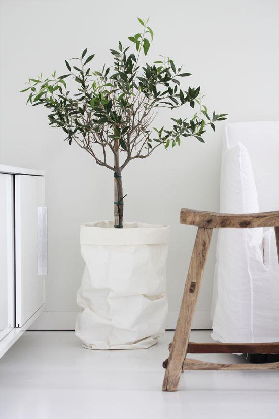 inspiration déco sac plante