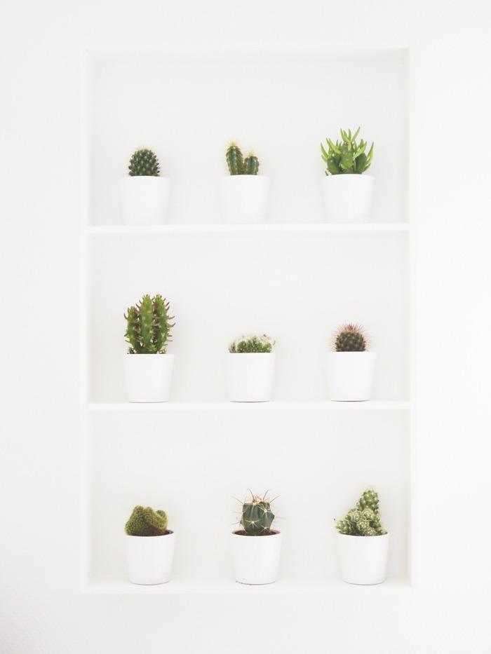 diy étagère à cactus Ikea 04