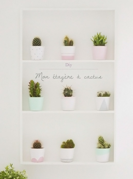 diy étagère à cactus Ikea 1