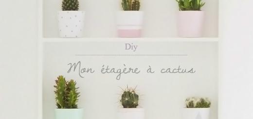 diy étagère à cactus Ikea en 1