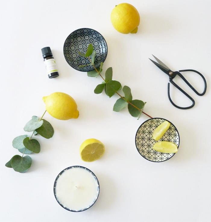 bougie contre les moustiques 04 citronelle