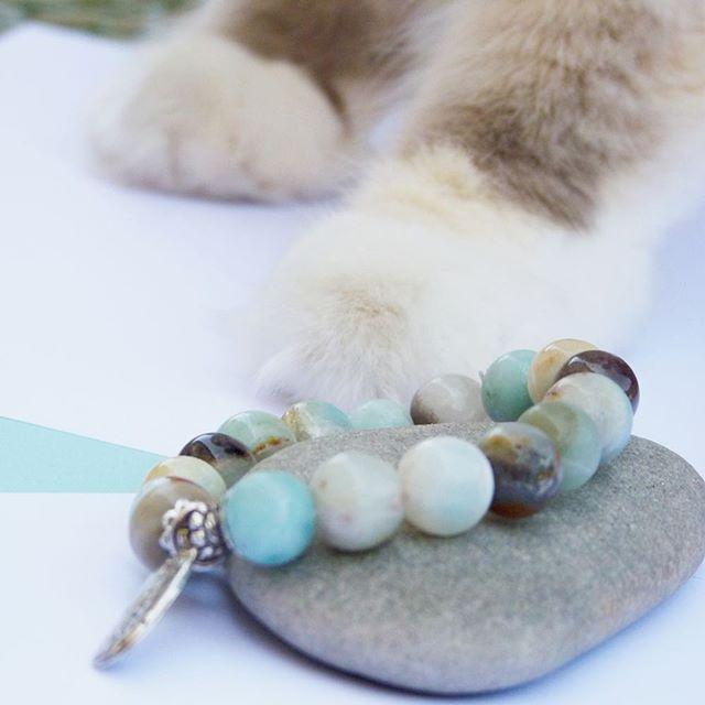 jolies choses 5 bracelet perles claire's