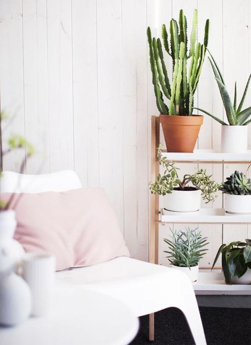 l 39 objet de convoitise l 39 tag re plantes black confetti. Black Bedroom Furniture Sets. Home Design Ideas