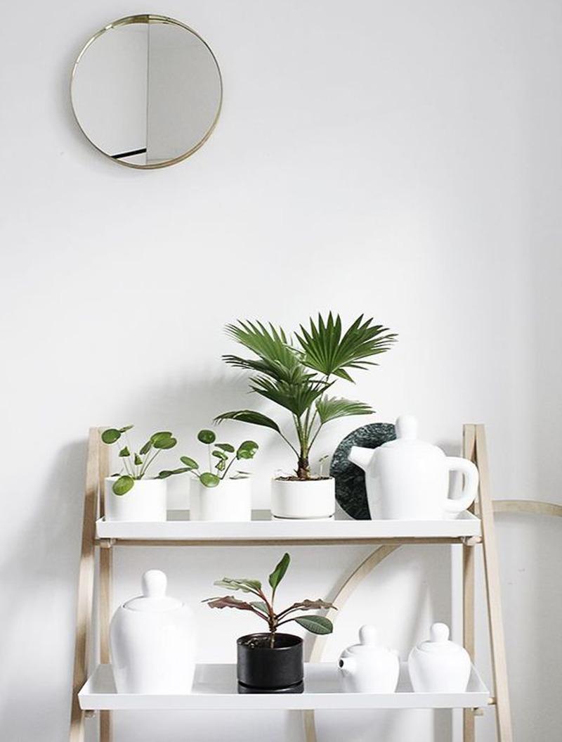 piedestal pour plantes. Black Bedroom Furniture Sets. Home Design Ideas