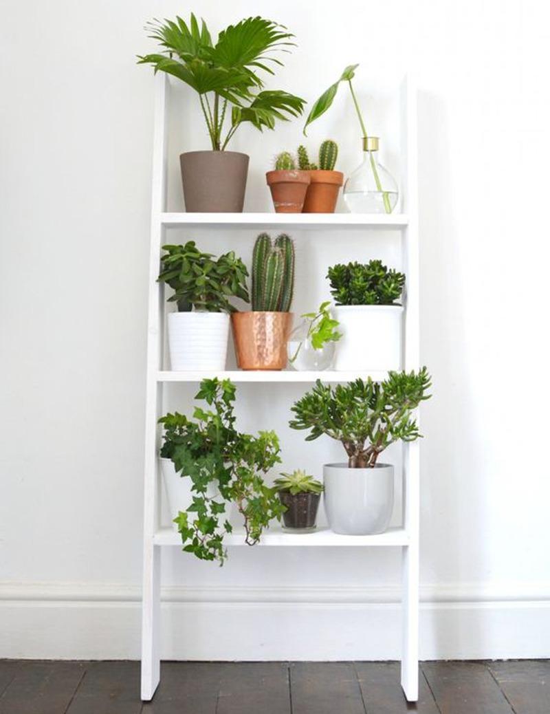 etagere à plantes 14