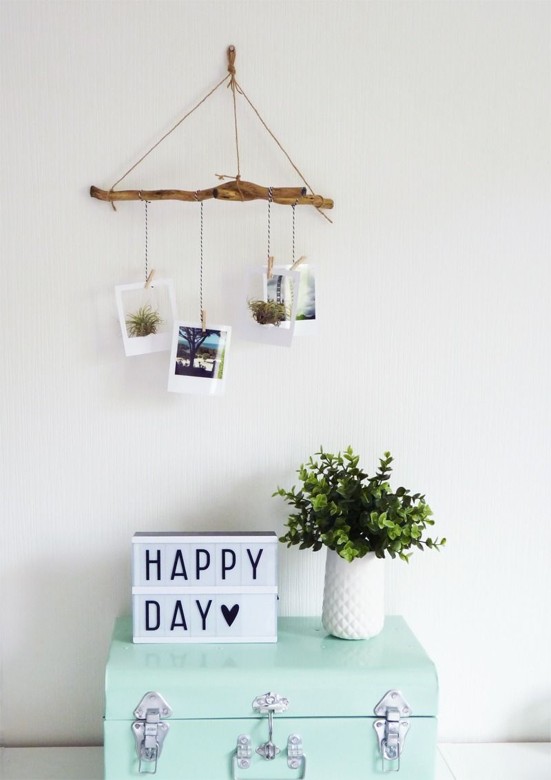 diy suspension polaroid air plant black confetti. Black Bedroom Furniture Sets. Home Design Ideas