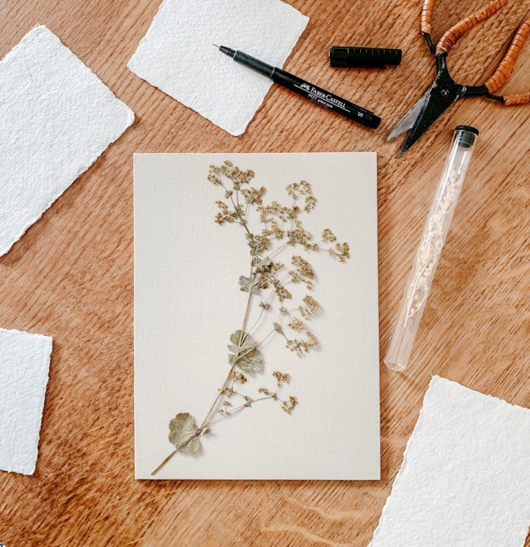 diy mur fleurs sechees 05